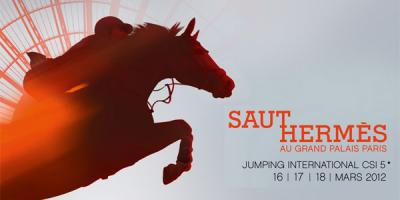 70395-saut-hermes-2012-grand-palais