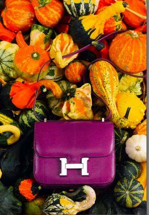 Vente Hermès Vintage Artcurial constance 30 octobre 2012